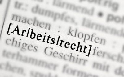 """Landtagsfraktion """"Die Linke"""" durfte Referenten kündigen"""